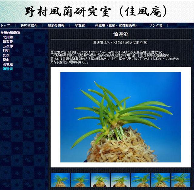 http://www.fuuran.jp/jiman_genntouhotaru.html