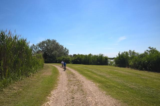 passeggiare e bicicletta a ostellato