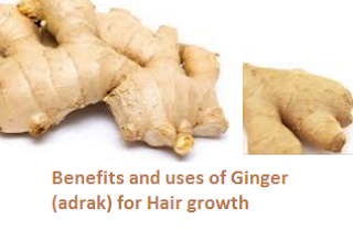 Benefits and uses of Ginger (adrak) for Hair growth