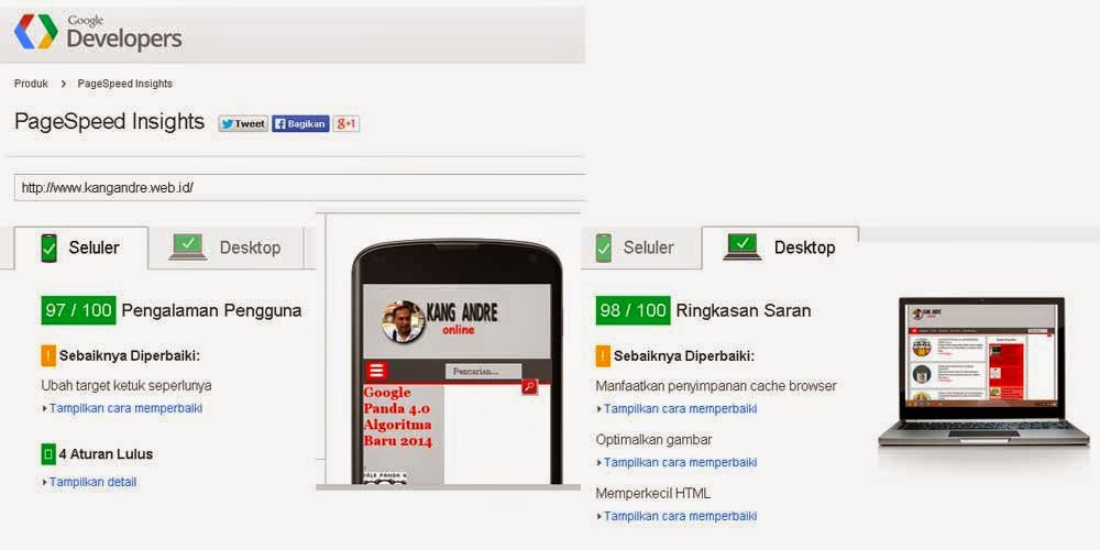 PageSpeed Insights untuk kecepatan
