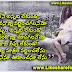 Beautiful telugu love quotes messages
