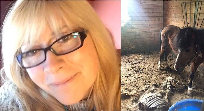Una ex policía de NY detenida por dejar morir de hambre  11 caballos en su finca dejando los restos al descubierto