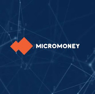 micro money ico