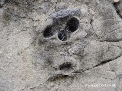 A face in a stone wall