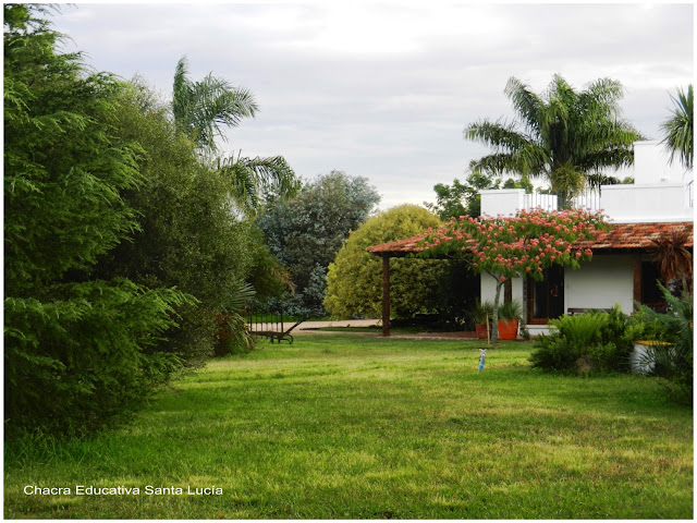 Bienvenidos al blog de la Chacra Educativa Santa Lucía