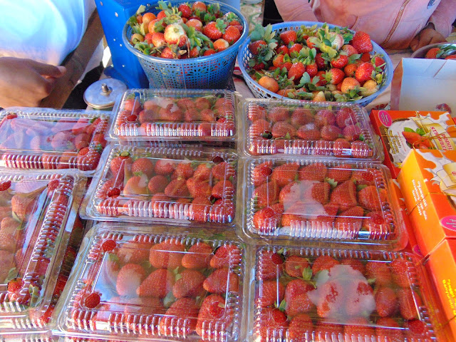 Beli buah di stand kuliner Kebun Inggit Strawberry Magelang