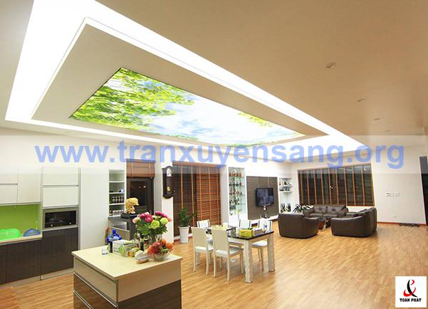 Trần nhà biệt thự kết hợp 2 tấm xuyên sáng trắng và tấm phong cảnh
