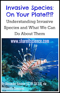 invasive species invasivore