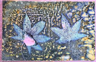 Wet cyanotype_Sue Reno_Image 278