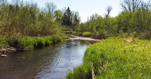 Along the New Wood River on the Averill-Kelly Creek Wilderness Segment of the Ice Age National Trail