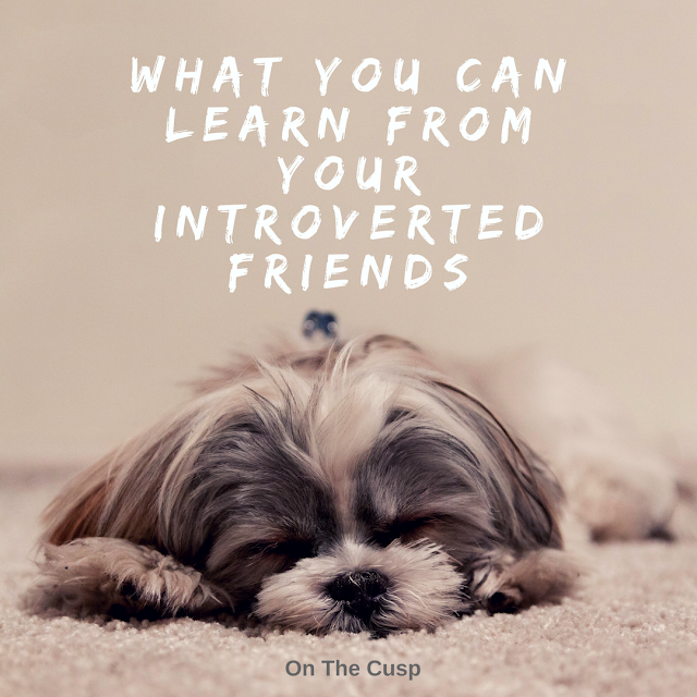 a photo of a sleeping dog with the text what you can learn from your introvert friends