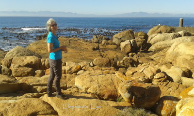 Mid-winter on the False Bay coast