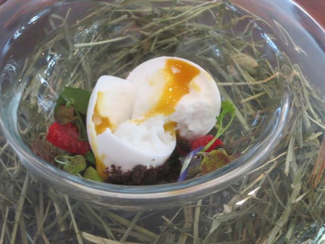 Finto uovo allevato a terra