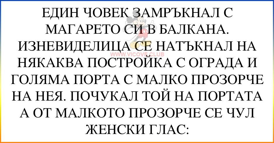 [ЛУД ЛУД ВИЦ] с магарето в балкана