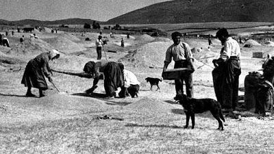 Resultado de imagen de mujeres en las faenas agricolas