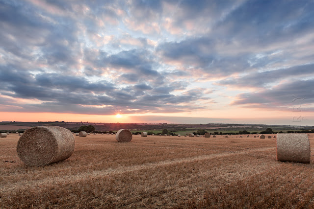 Warm summer landscape of hay bales in the Gloucestershire Cotswolds by Martyn Ferry Photography