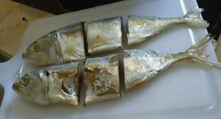 Ikan Peda - NMUTTY.com
