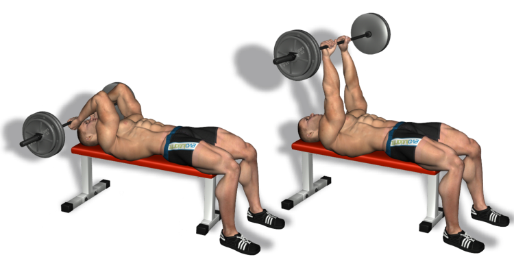 Best Triceps Workouts and Exercises For Muscle Building ...