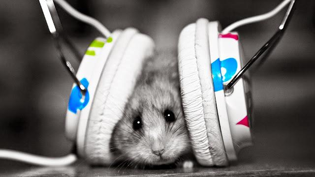 najlepsza muzyka