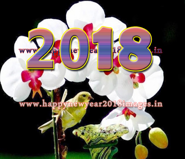 2018 Happy New Year Wallpapers for Facebook