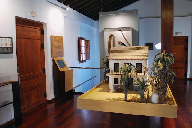 Museo de Palmeral - Elche