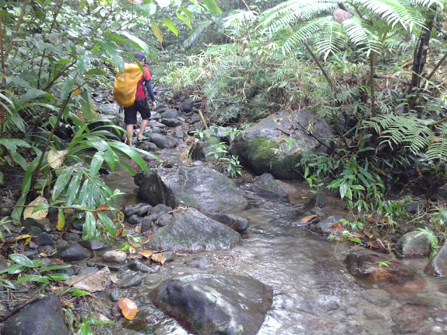 Into the River of Busay Falls