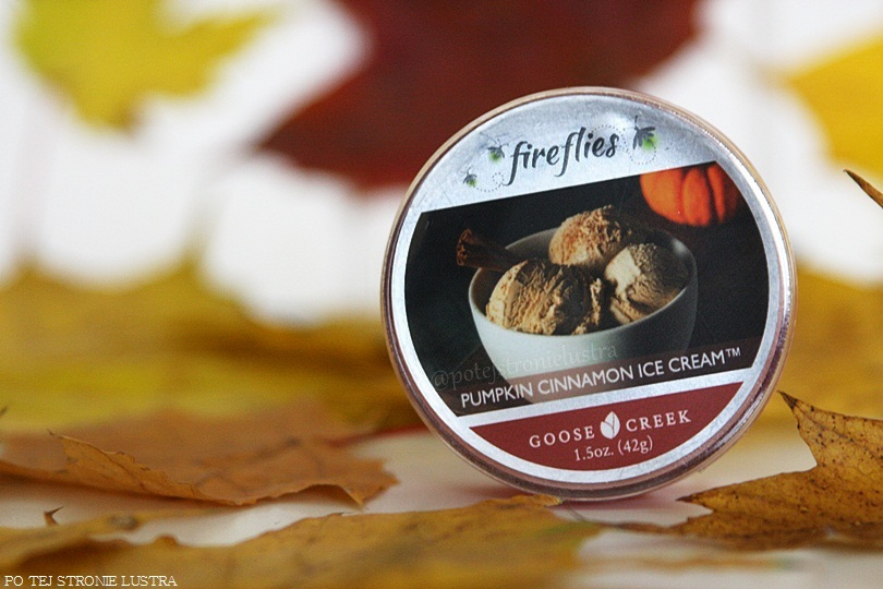 fireflies goose creek pumpkin cinnamon ice cream