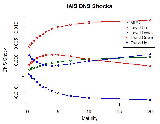 IAIS DNS shock R code