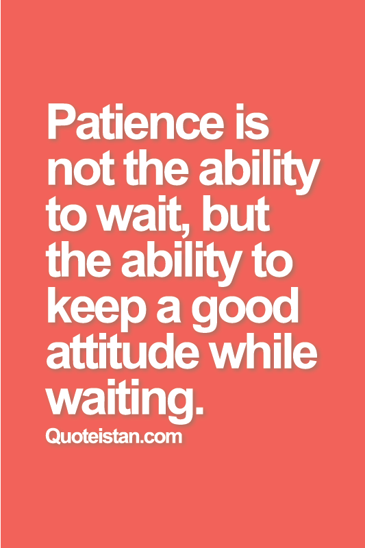patience is not the ability to wait but the ability to
