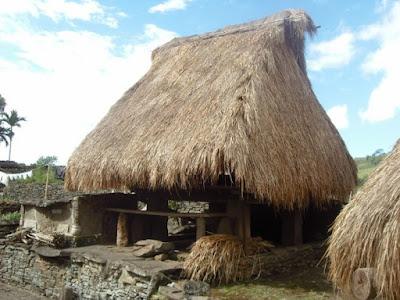 Rumah Adat Provinsi Nusa Tenggara Timur ( Rumah Musalaki )