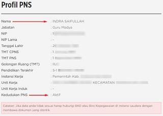 Cek Profil PNS di BKN