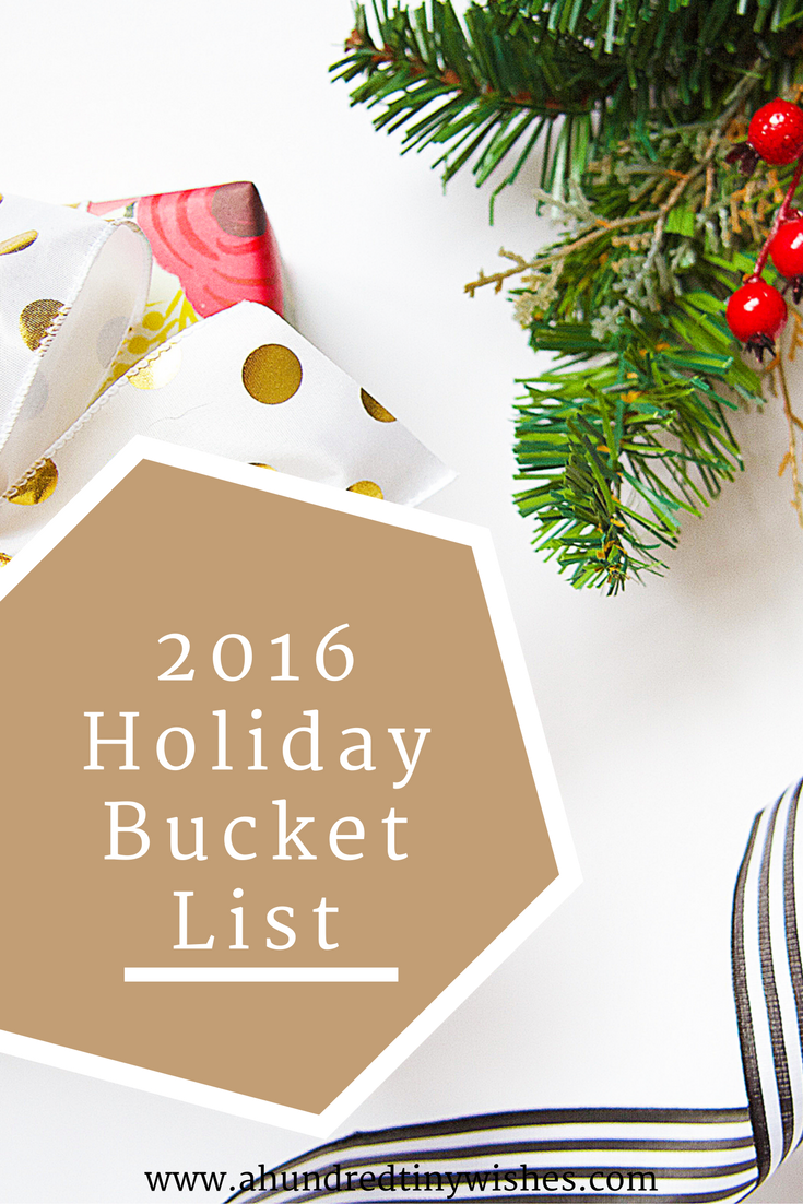 2016 Holiday bucket list