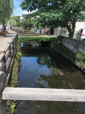 三島の町の水路