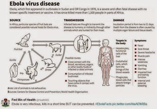 การระบาดของไวรัสอีโบลา
