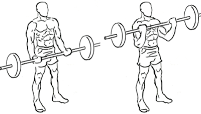 biceps workout,bar biceps curl,workout for biceps,how make great biceps,arms workout