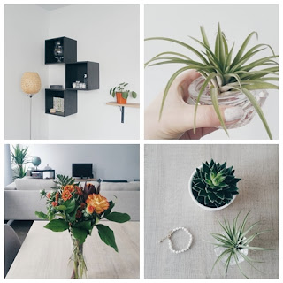Clothes & Dreams: Instadiary: Plant Party