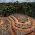 Pengertian Deforestasi, Degradasi dan Fragmentasi Hutan