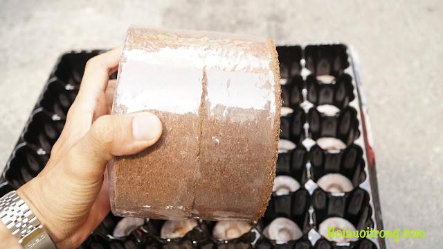 Đất sạch được đóng gói quy cách, gọn gàng, dễ bảo quản