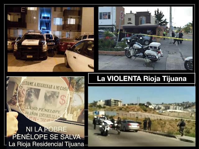 La-arboleda, La Arboleda, Villa del Mar, Las Palmas, Bonaterra, www.bonaterraags.mx/, Valle de las Flores, www.valledelasflores.com.mx/, www.senderosdemonteverde.mx, SENDEROS DE MONTEVERDE, Valle imperial, la-rioja.mx, La-riojatij.mx, Desarrollador - BP Propietarios, www.bpichilingue.com/desarrollador/, 2G | Living Concept, www.grupo2g.mx/, Real del Sol AGS, www.realdelsolags.mx/, gruposancarlos.com/, fabula.mx/proyectos/gig/, Las villas, las-villas.com.mx/, elementespaciodevida.mx/, www.valleimperial.mx/, valleimperial.mx, valleimperial.com.mx, Valle imperial Guadalajara, Valle imperial Tlajomulco, Valle imperial gig, Gig desarrollos valle imperial, www.catalanliving.mx/, catalanliving.mx, Catalán living, Catalán living.mx, Las Palmas, las-palmas.mx/, Terrazas Residencial, www.las-terrazas.com.mx/, Terrazas residencial gig, El Campestre Residencial, www.elcampestre.com.mx/, El campestre.com.mx, www.elcampestre.com.mx, El campestre.mx, Sendas Residencial,