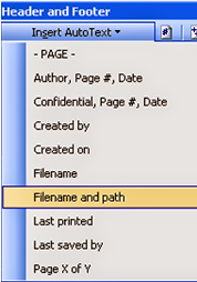 Insert File Path from Header and Footer Option