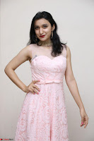 Sakshi Kakkar in beautiful light pink gown at Idem Deyyam music launch ~ Celebrities Exclusive Galleries 021.JPG