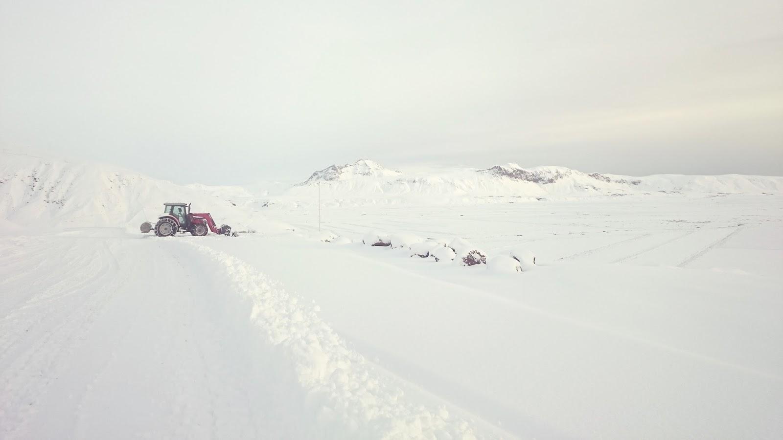islandzka zima, Islandia, południowa Islandia, zima w Islandii