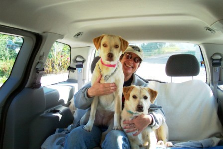 Dogs Day Inn Atascocita Reviews
