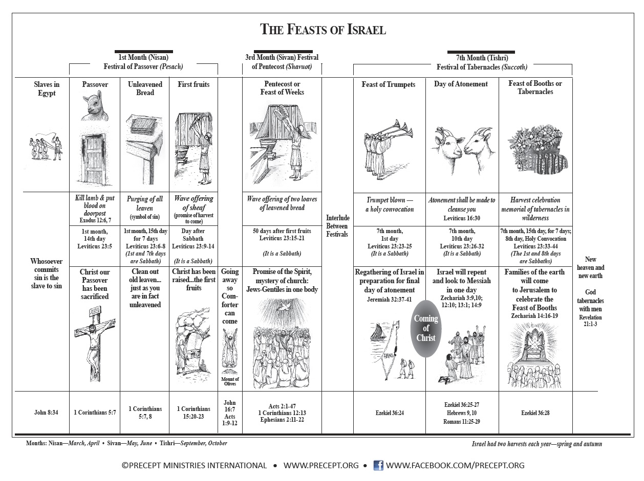 Tammy's Notes: The Feasts of the Lord