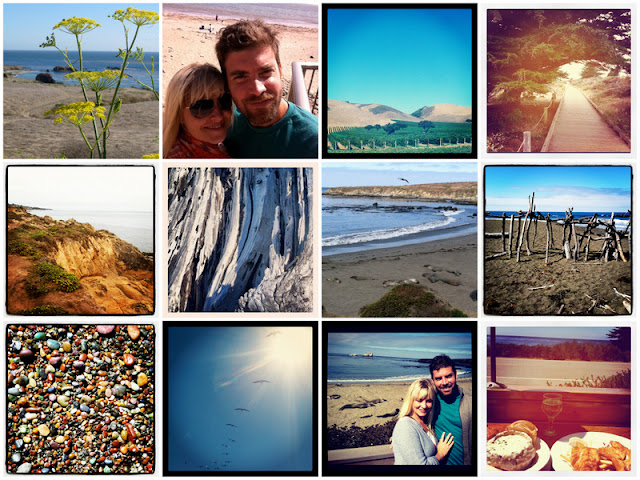 highlights of a CA roadtrip to Cambria, CA on oh lovely day