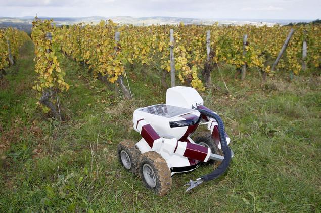 روبوتات تدخل الحياة البشرية