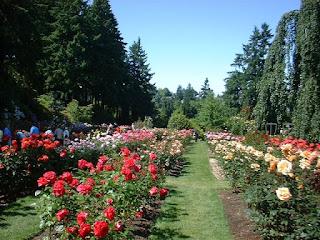 """<img src=""""taman bunga.jpg"""" alt=""""Tanaman Bunga Mawar"""">"""