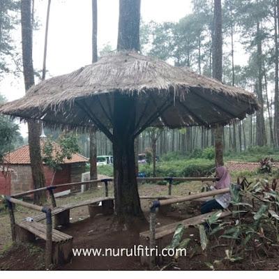 Gazebo di Tempat Wisata Hutan Pinus Cikole Lembang Bandung