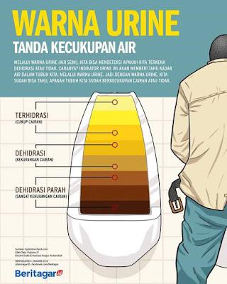 Apa Warna Air Kencing anda Hari ini?