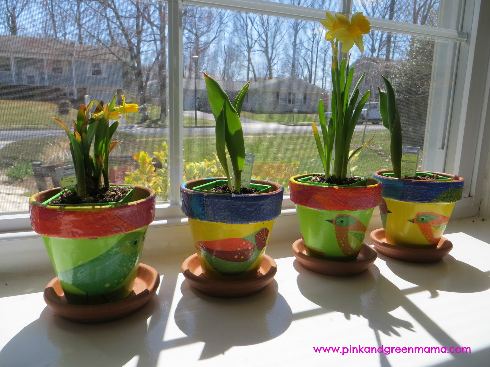 Pink And Green Mama Spring Windowsill Garden For Children With Diy
